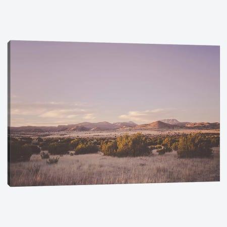 Desert Sunset Canvas Print #AHD46} by Ann Hudec Canvas Art Print