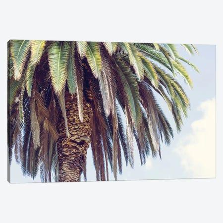 Hollywood Canvas Print #AHD65} by Ann Hudec Art Print