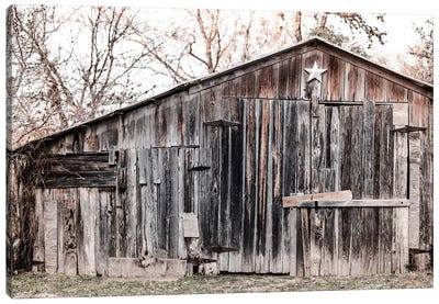 Lone Star Barn Canvas Art Print