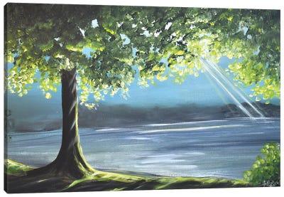 Illuminating Woodlands Canvas Art Print