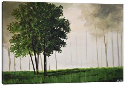 One Green Tree Canvas Art Print