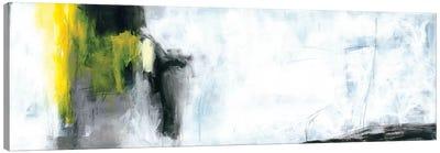 After the Storm I Canvas Art Print