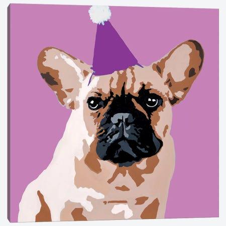 Milo On Violet Canvas Print #AHM23} by Julie Ahmad Canvas Print