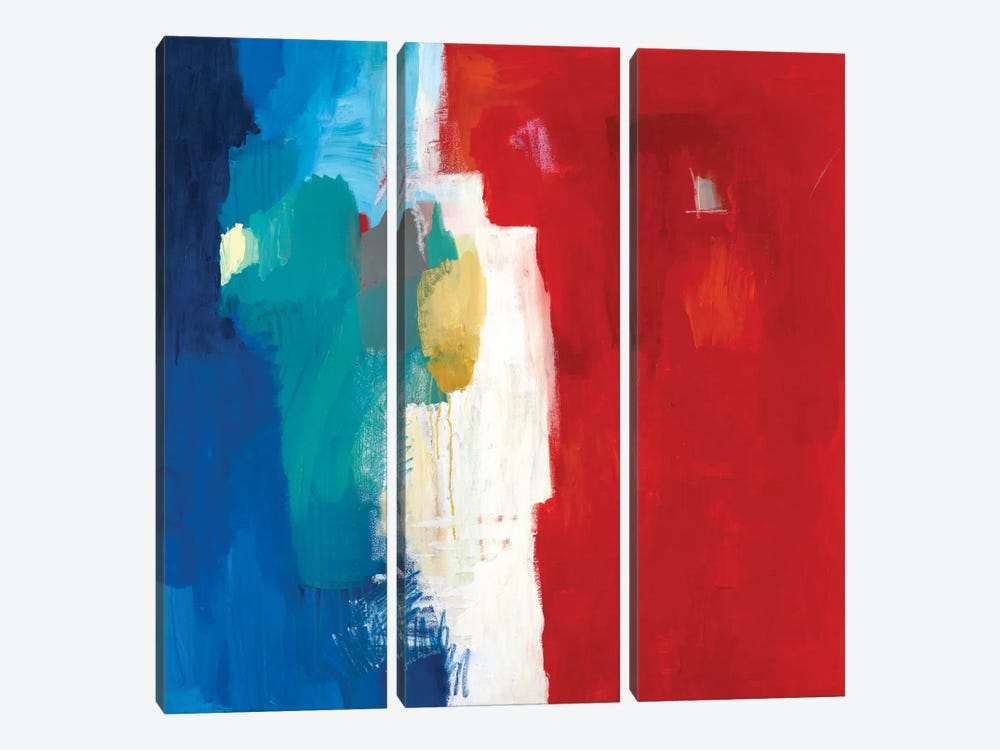 Mixed Signals by Julie Ahmad 3-piece Canvas Wall Art