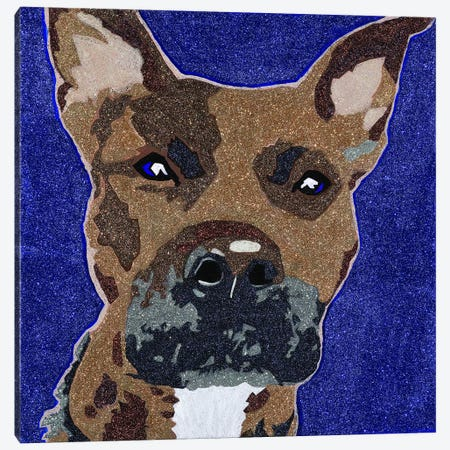 Prince The Pit Canvas Print #AHM30} by Julie Ahmad Canvas Wall Art