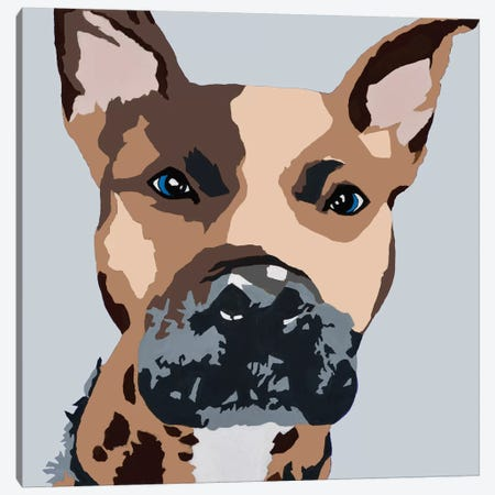 Prince The Pit On Gray Canvas Print #AHM31} by Julie Ahmad Canvas Art
