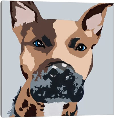 Prince The Pit On Gray Canvas Art Print