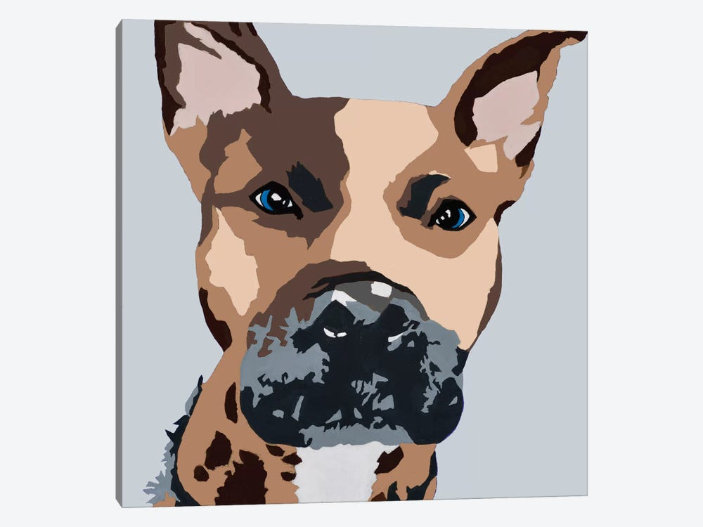 Prince The Pit On Gray by Julie Ahmad 1-piece Canvas Art