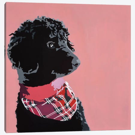 Standard Black Poodle Canvas Print #AHM35} by Julie Ahmad Art Print