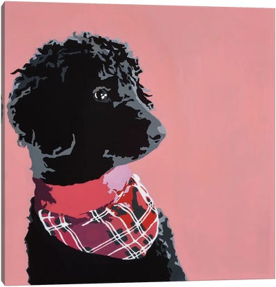 Standard Black Poodle Canvas Art Print