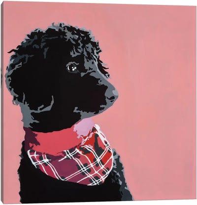 Standard Black Poodle Canvas Art Print