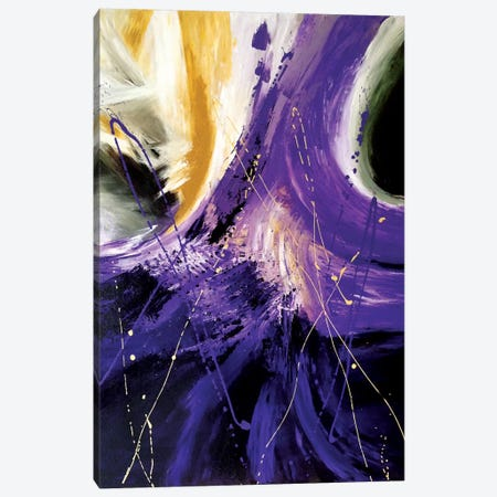 The Final Frontier Canvas Print #AHM39} by Julie Ahmad Canvas Art