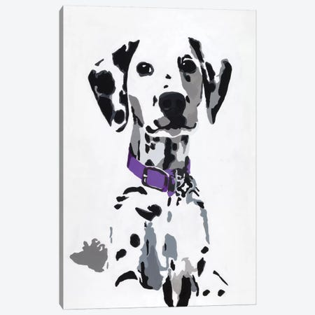 Winnie III (Purple Collar) Canvas Print #AHM43} by Julie Ahmad Canvas Art Print
