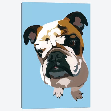 Bulldog On Blue Canvas Print #AHM52} by Julie Ahmad Canvas Wall Art