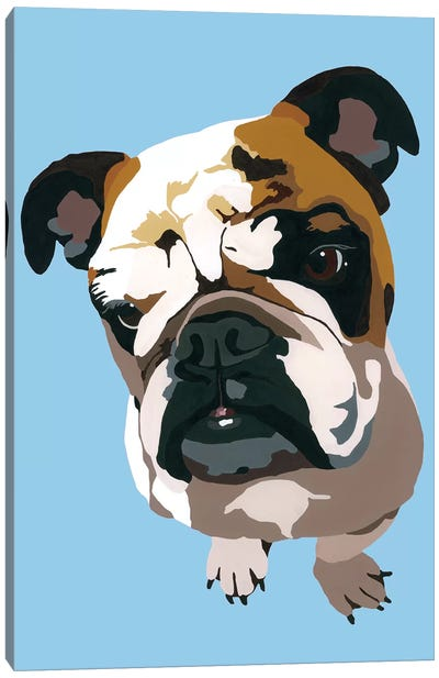 Bulldog On Blue Canvas Art Print