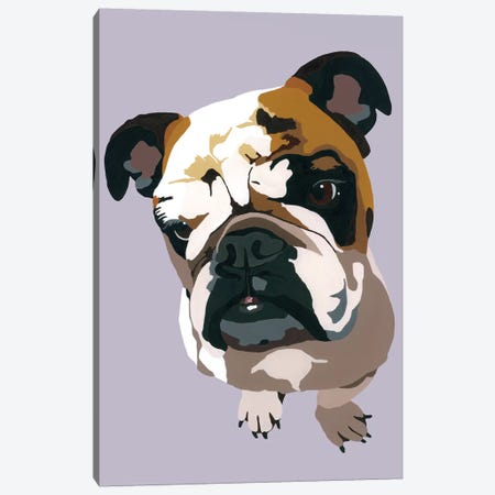 Bulldog On Gray Canvas Print #AHM53} by Julie Ahmad Canvas Art