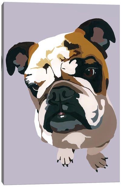 Bulldog On Gray Canvas Art Print