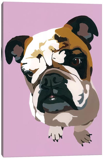 Bulldog On Lavender Canvas Art Print