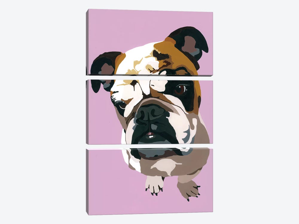 Bulldog On Lavender by Julie Ahmad 3-piece Canvas Art Print