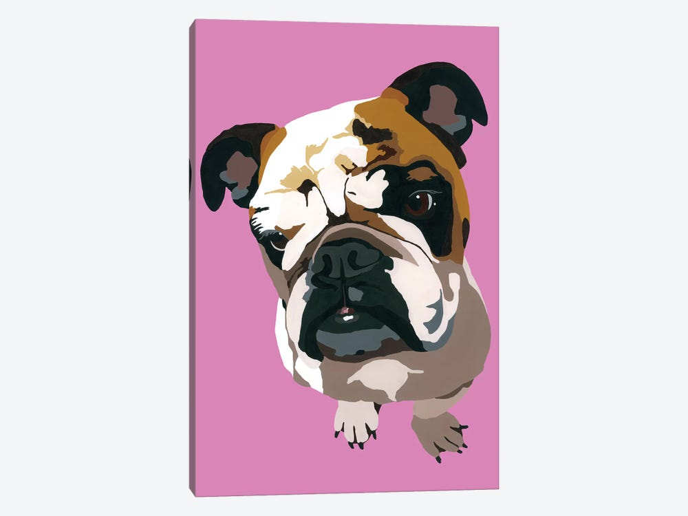 Bulldog On Pink by Julie Ahmad 1-piece Canvas Wall Art
