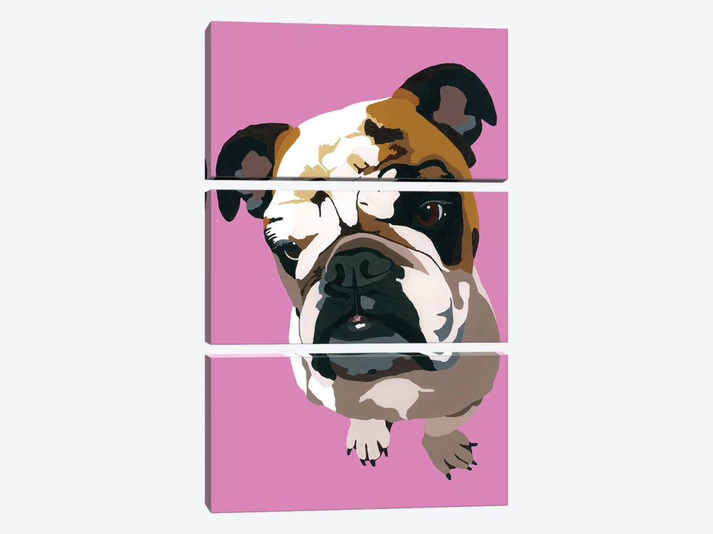 Bulldog On Pink by Julie Ahmad 3-piece Canvas Wall Art