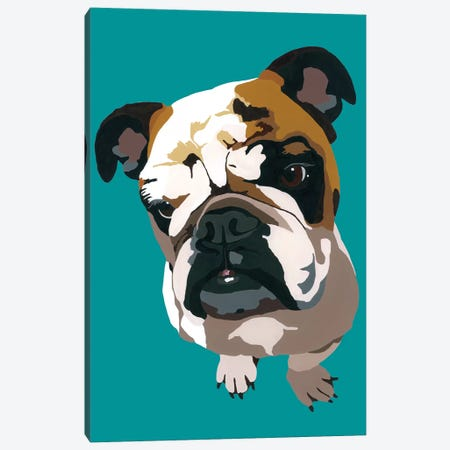 Bulldog On Teal Canvas Print #AHM56} by Julie Ahmad Canvas Print