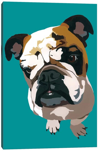 Bulldog On Teal Canvas Art Print