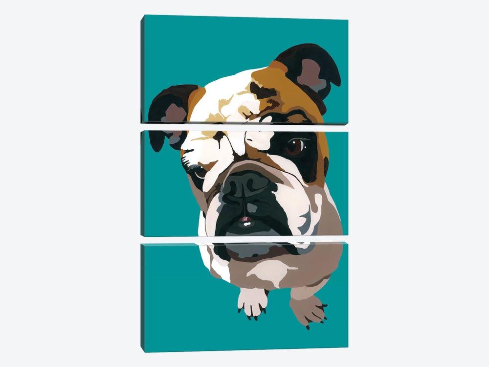 Bulldog On Teal by Julie Ahmad 3-piece Canvas Art Print