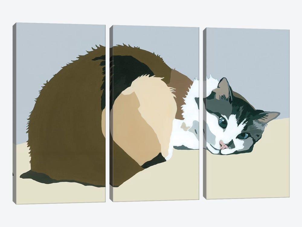 Colbert On Gray by Julie Ahmad 3-piece Art Print