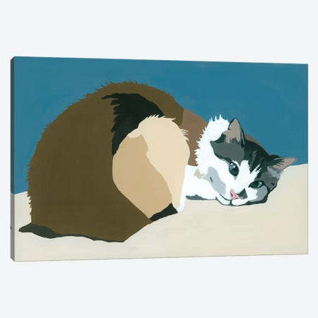 Colbert On Teal Canvas Print #AHM61} by Julie Ahmad Canvas Art Print