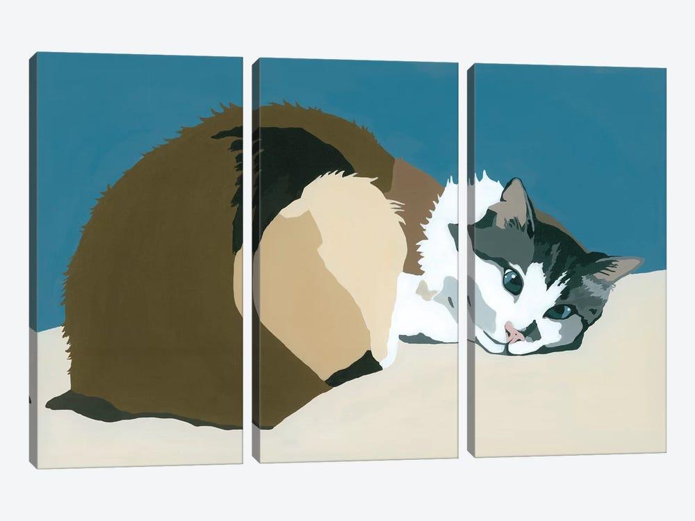 Colbert On Teal by Julie Ahmad 3-piece Art Print