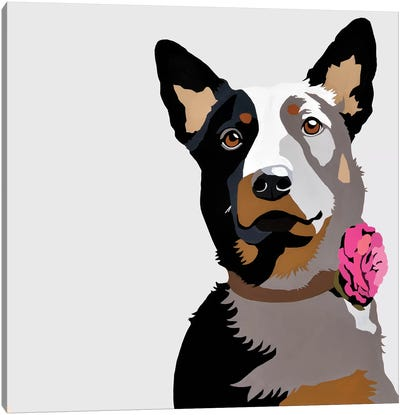 Jasper With A Pink Flower Canvas Art Print