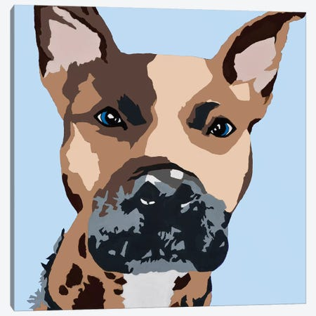 Prince The Pit On Baby Blue Canvas Print #AHM77} by Julie Ahmad Canvas Print