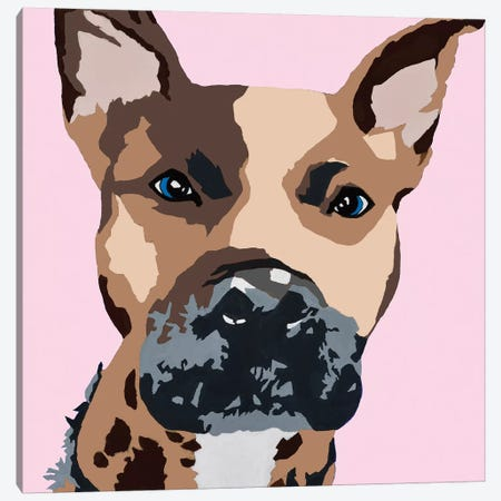 Prince The Pit On Pink Canvas Print #AHM78} by Julie Ahmad Canvas Wall Art