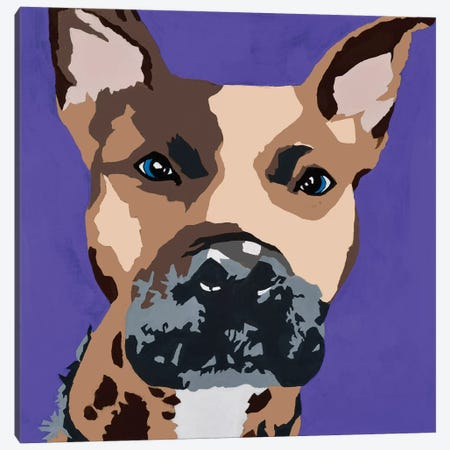 Prince The Pit On Purple Canvas Print #AHM79} by Julie Ahmad Canvas Art