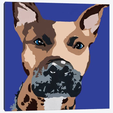 Prince The Pit On Royal Blue Canvas Print #AHM80} by Julie Ahmad Canvas Print