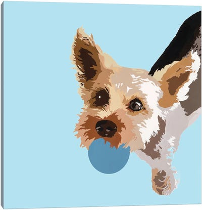 Rex On Light Blue Canvas Art Print