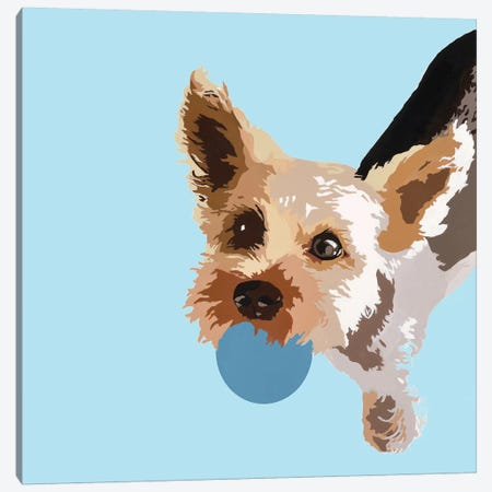 Rex On Light Blue Canvas Print #AHM82} by Julie Ahmad Canvas Art Print
