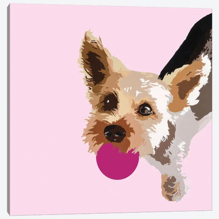 Rex On Pink Canvas Print #AHM83} by Julie Ahmad Canvas Print