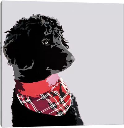 Standard Black Poodle II Canvas Art Print