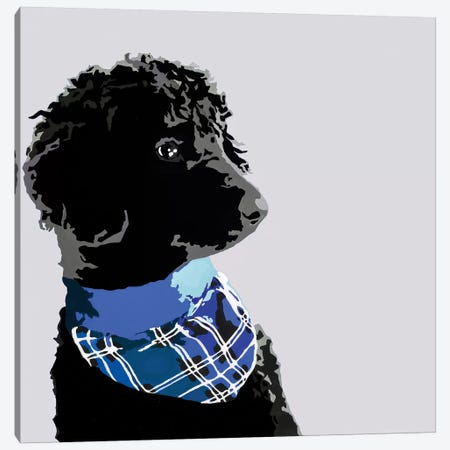 Standard Black Poodle III Canvas Print #AHM86} by Julie Ahmad Canvas Wall Art