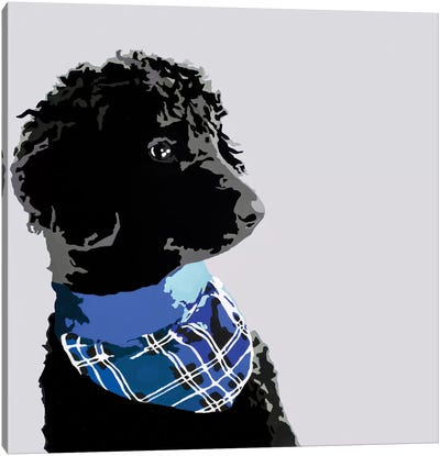 Standard Black Poodle III Canvas Art Print