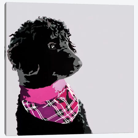 Standard Black Poodle IV Canvas Print #AHM87} by Julie Ahmad Canvas Wall Art