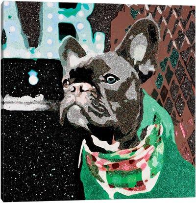 Biggie In Green Canvas Print #AHM8