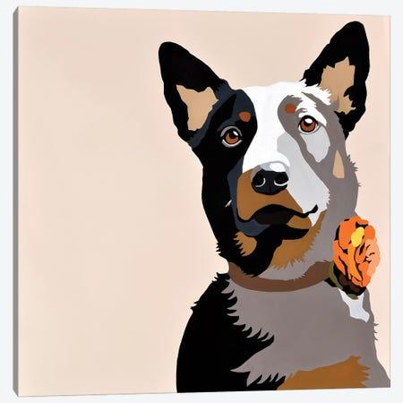 Jasper Orange Canvas Print #AHM99} by Julie Ahmad Canvas Artwork
