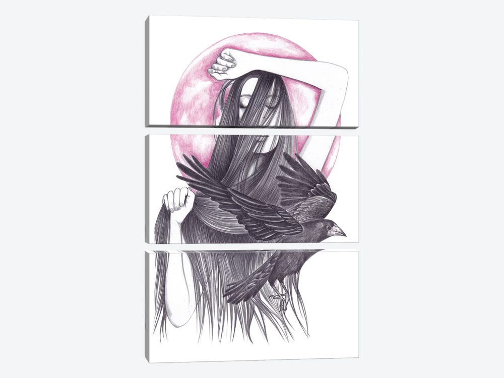 Crow Dance by Andrea Hrnjak 3-piece Canvas Artwork