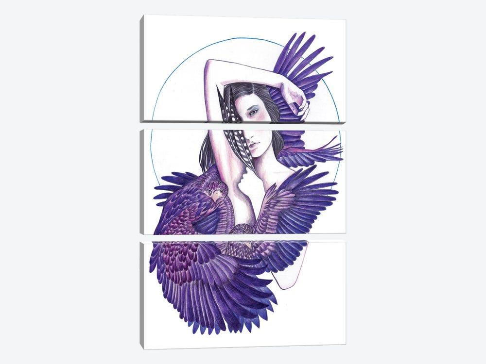 Eagle Woman by Andrea Hrnjak 3-piece Canvas Art
