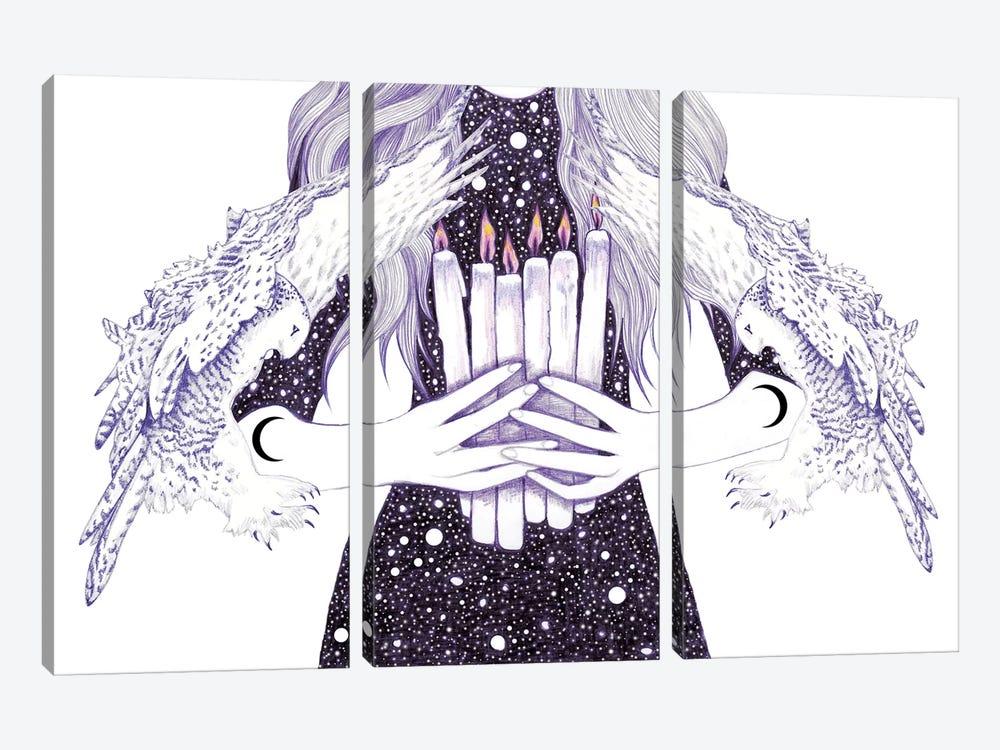 Nightwalker by Andrea Hrnjak 3-piece Canvas Wall Art