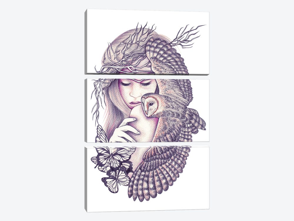 Owl Spirit by Andrea Hrnjak 3-piece Canvas Artwork