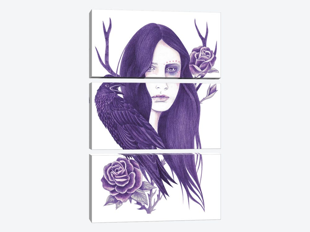 Raven by Andrea Hrnjak 3-piece Canvas Wall Art